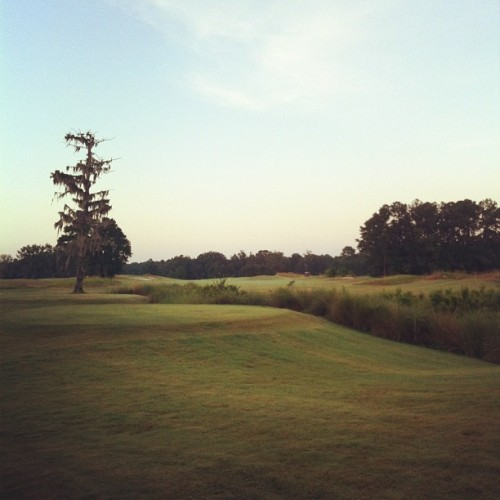 Golfing today (Taken with Instagram)