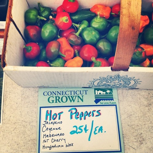 Hot peppers! #farm #peppers #fresh #ctgrown #auntpatti #uncleray (Taken with Instagram at The Farm)