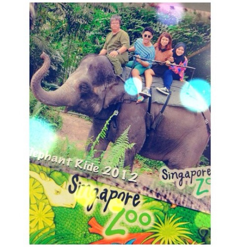 The best part about today; 🐘 ride! #elephant #ride #Singapore #zoo @nhsbb @mwafiuddin  (Taken with Instagram at Singapore Zoo )