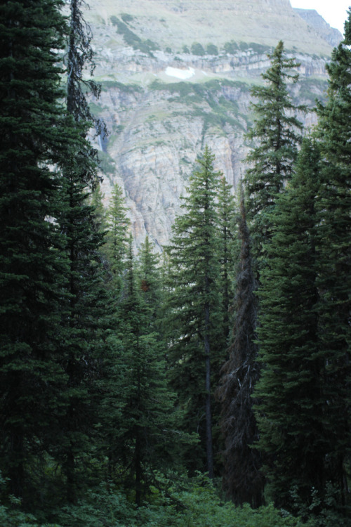 just-breezy:  Untitled | Andrew Holzschuh