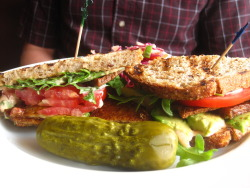 Tofu BLT from Garden Grille Cafe in Pawtucket, RI!