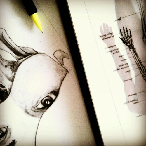 Work in progress.  I should eat something. :/ (Taken with Instagram)