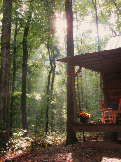 thisrusticlife:  fall morn at the cabin (by thecabinpath)