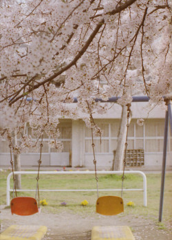 caelestial:  schoolyard by +yooco+ on Flickr.