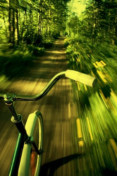 This would make a fabulous painting! #PaintingIdea #Bike zooming through the forest.
