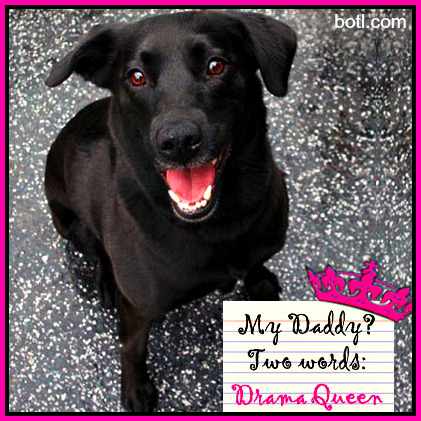 taleswagging:  My Daddy?  Two words:  DRAMA QUEEN!!