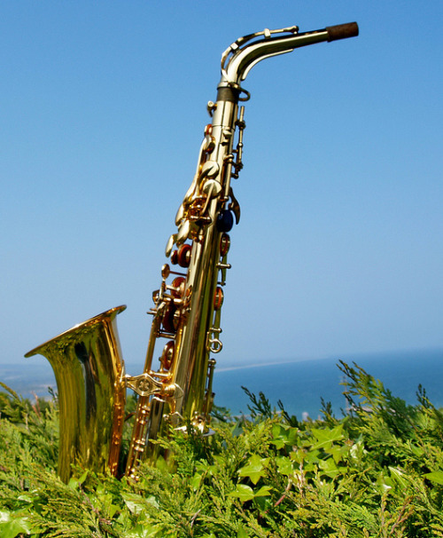 saxopwns:  saxy foto by museque on Flickr. …But why is the neck so loose?