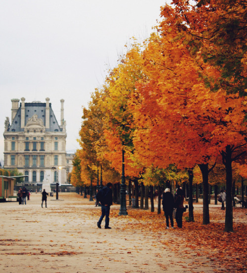 ysvoice:  | ♕ |  Jardin des Tuileries - autumn in Paris  | by © christine.m.kim