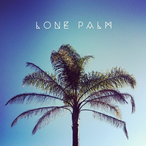 Just a lonely palm tree. #palm #sky #blue #design #type #typography #graphic (Taken with Instagram)