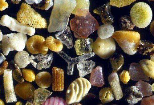 Sand, under a 250x microscope. Absolutely fabulous, and shows just what story a handful of sand could tell us.