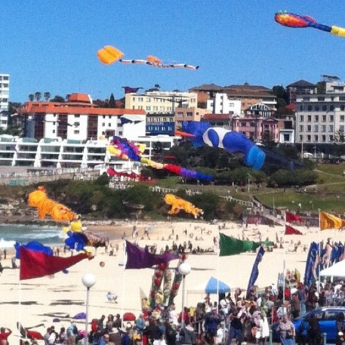 Festival of the winds at Bondi #seeaustralia #seesydney #bondi #bondibeach #bondipavillion #flags #kites  (Taken with Instagram at Bondi Beach)