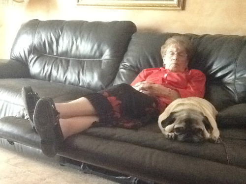 Mama Ellen and Frankie took a snooze together this afternoon.