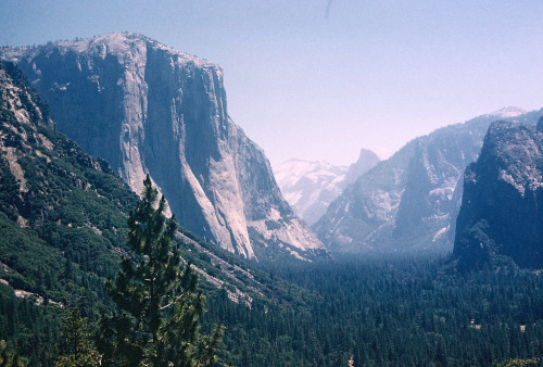 incidentale:  Yosemite Valley from Inspiration Point, 1960 (by lreed76)