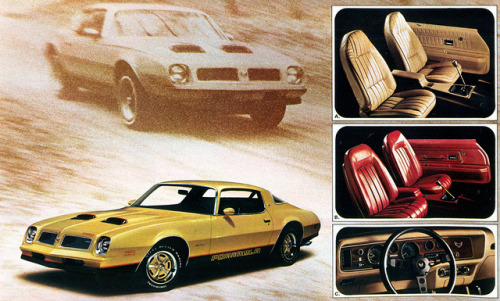 1976 Pontiac Firebird Formula by coconv on Flickr.1976 Pontiac Firebird Formula