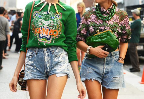 green shoot tommy ton