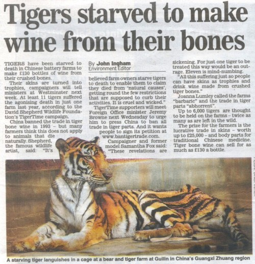 funnywildlife:  Sign this shit now: Ban Tiger trade: http://www.tigertime.info/bantigertrade.html