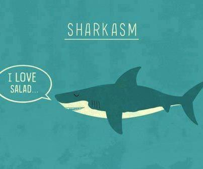 lickystickypickywe:  Sharkasm. by Teo Zirinis | Society6
