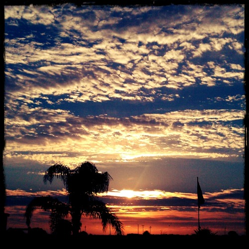 pollykaylove:  South Texas sunrise.