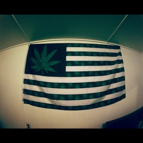 enterplanetkoda:  Pledge of Allegiance.