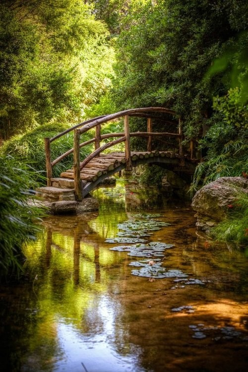 lori-rocks:  ✯ The Little Bridge ✯via pinterest