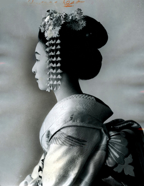 Maiko in Profile, 1965