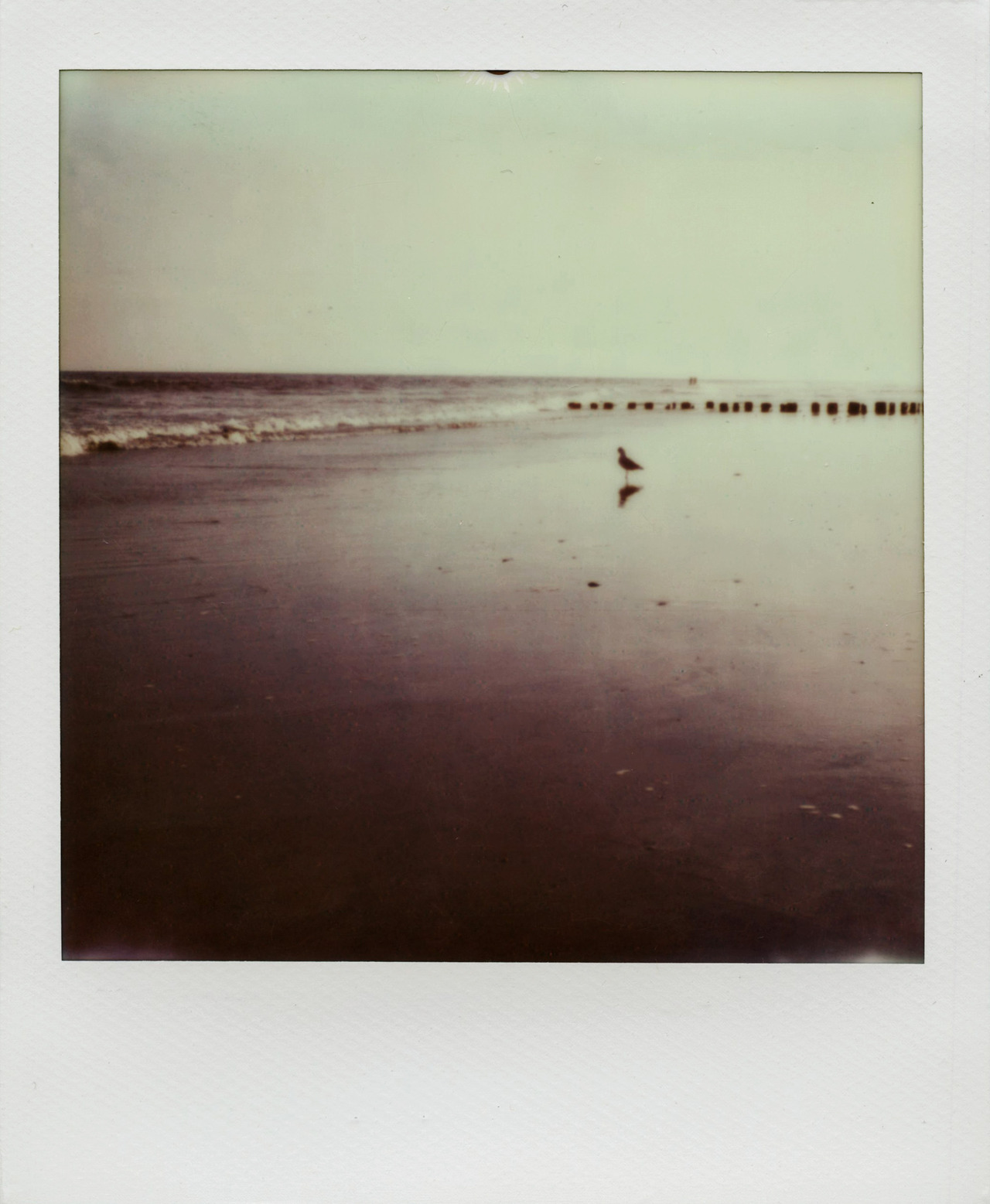 last beach day of the summer in new york.  rockaway beach, polaroid px680 <3