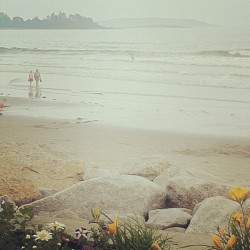 vineyarddreams:  Maine.  I need to go back.