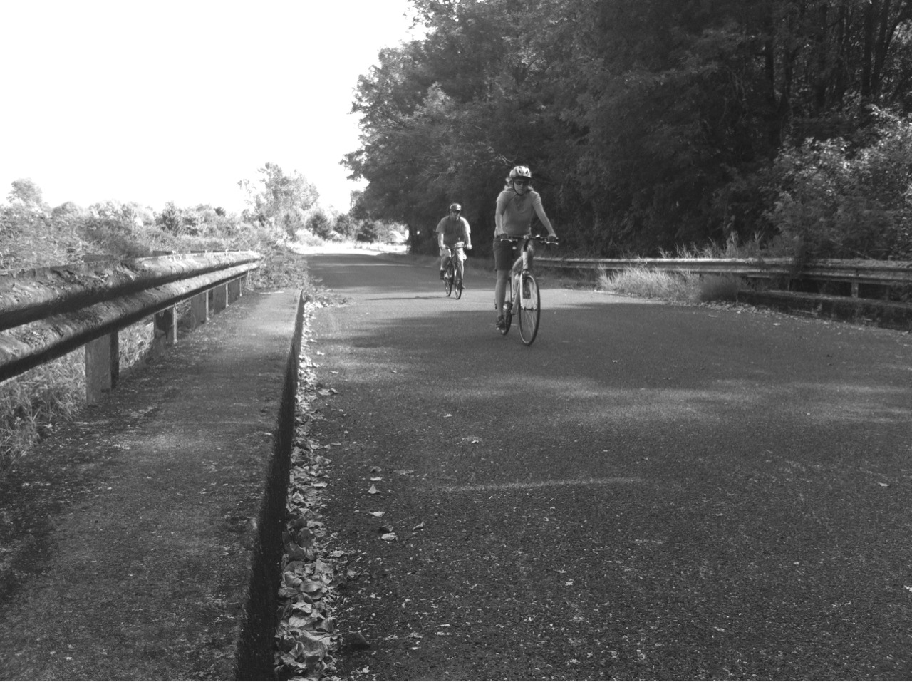 Bicyclists On The Green River Trail #hueless ©2012 Kent Kangley