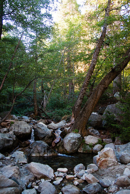untitled on Flickr. Icehouse Canyon Trail - Cucamonga Wilderness / Angeles National Forest, Ca.facebook .prints .twitter