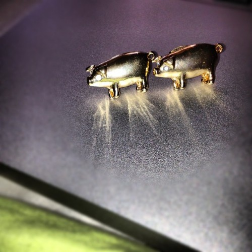 I am now the proud owner of pig earrings. With rhinestone eyes. #love (Taken with Instagram)