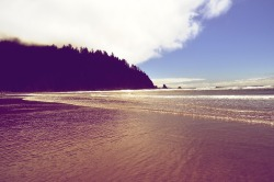 Short Sands Beach, Oswald West State Park, Oregon