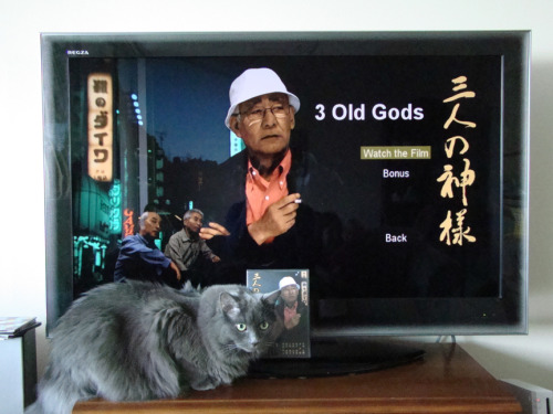 3 Old Gods is a short film about three supposed, forgotten gods in a Japanese forest — or perhaps they're just crazy old men. It was written by Josh Tierney, shot in a Japanese forest with a Japanese crew, directed by Cécile Brun and me. The soundtrack was composed by Giannis Milonogiannis.A dream team! It will be avalaible online soon.