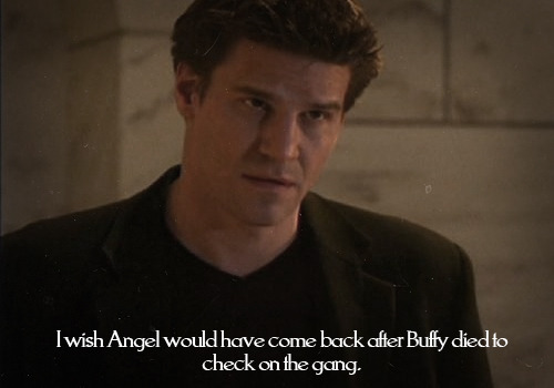 I wish Angel would have come back after Buffy died to check on the gang.