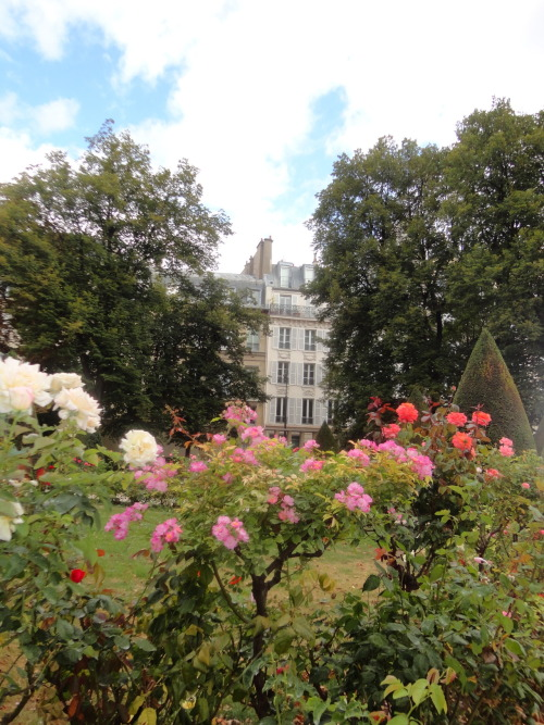 View from the sculpture garden at the Musée Rodin - one of my favorite spots in Paris.