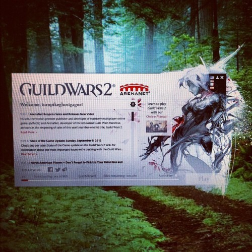 Impatient nerd is impatient. 4% completeeddd. #guildwars #gw2 #gamer (Taken with Instagram)