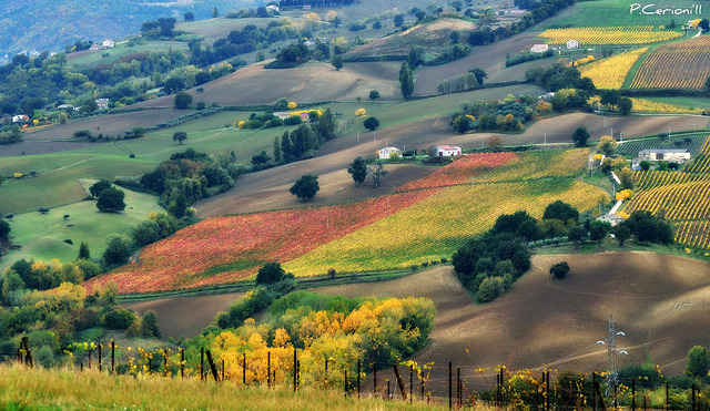 LE MARCHE, la mia amata terra  -  THE MARCHE, my beloved land by pietrocerioni on Flickr.