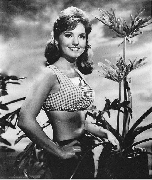hollyhocksandtulips:  Dawn Wells