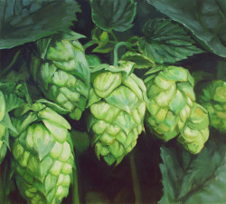 Paintings of hops.