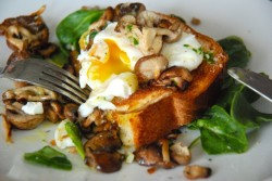 Poached Eggs on Toasted Brioche with Garlicky Mushrooms.