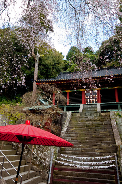 Kunōzan Tōshō-gū is a Shintō shrine in Suruga-ku in the city of Shizuoka in Shizuoka Prefecture, Japan.  (by Yu-z)