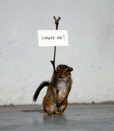 contemporaryobsessions:  AggtelekCurate Me!Stuffed chipmunk, branch and paper, 22 x 8 x 10 cm, 2011. Exile Artists