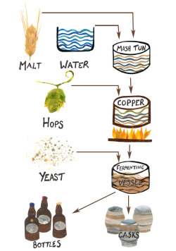Here is a simplified diagram of the brewing process I created for Hackney Brewery . If you see their beer around, try it, it is really good especially the Golden Ale! If you don't see it….ask for it, then maybe they will have it next time you go in!