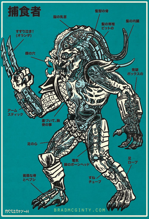 An anatomical guide to the Predator by Brad McGinty