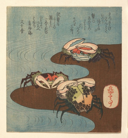 heracliteanfire:  Crabs Near the Water's Edge. Yashima Gakutei, ca. 1830 (via The Metropolitan Museum of Art)
