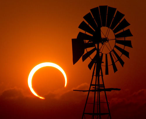 raspberrytart:  2012 Annular Solar Eclipse - Lubbock, Texas (by unripegreenbanana)
