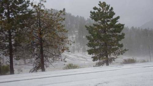 GOING VIRAL: Winter storm hits Mt. Charleston