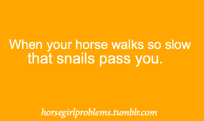 horsegirlproblems:  submitted by: anon  When you're practically DRAGGING them to the barn.