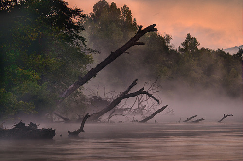 karjars:  Morning Mist on the Meramec River by bobc4 on Flickr.