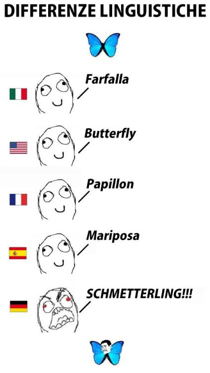 Today in Memes That Are New To Me™… Differenze Linguistiche!