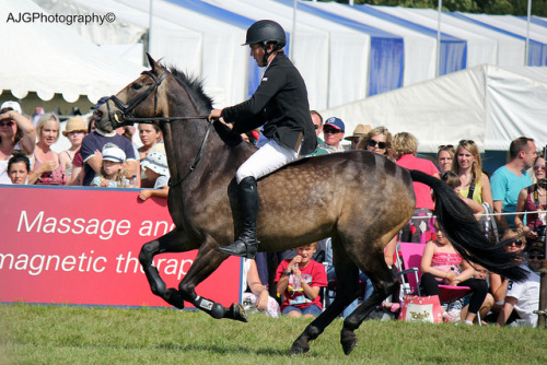 "ajg-ph0tography:  ""Dare To Bare"" Bareback Show Jumping @ Blenheim Horse Trials on Flickr.  I would absolutely 100% do this."